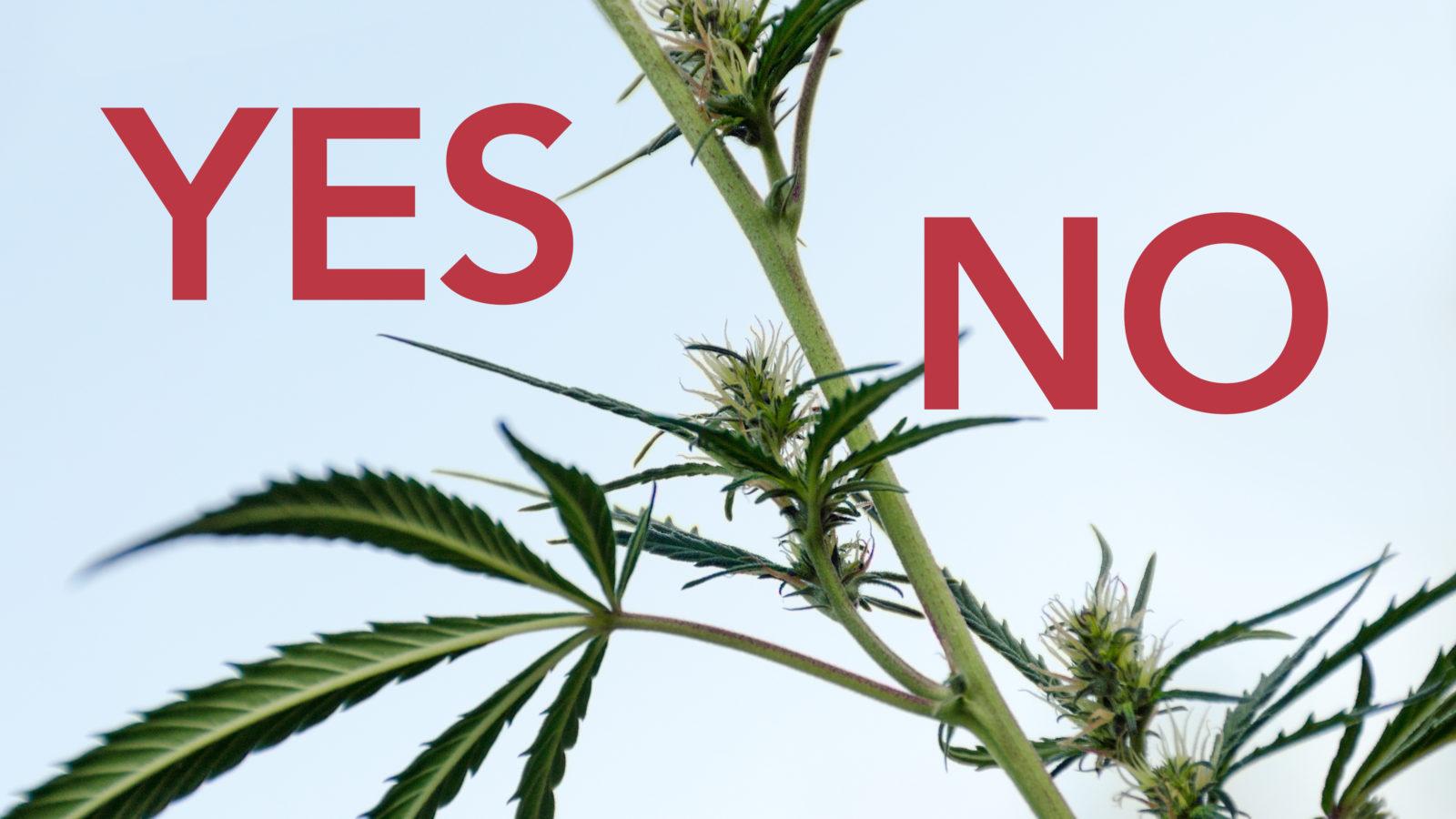 Signs of Marijuana Use Disorder - Is Marijuana Addiction Real?